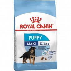 Royal Canin SHN MAXI PUPPY Пълноценна суха храна за подрастващи кученца от 4- до 15-месечна възраст от едри породи /15кг/