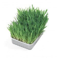 Karlie Soft Трева за котки - мека