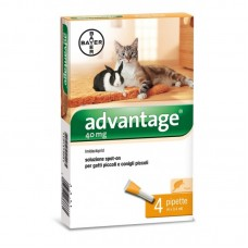 Адвентидж 40 спот он за малки котки и декоративни зайци под 4 кг / една пипета/