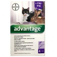 Адвентидж 80 спот он за големи котки и декоративни зайци над 4 кг / една пипета/